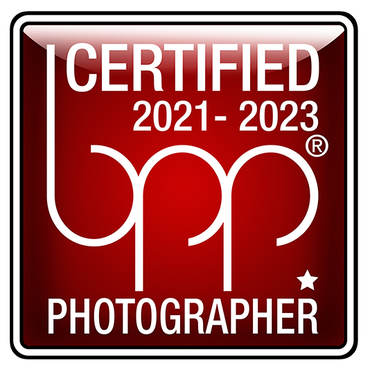 bund professioneller portraitfotografen